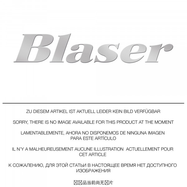 Blaser-Sattelmontage-KBV.jpg