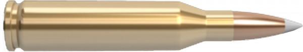 Nosler-30-06-Springfield-11.66g-180grs-Trophy-Grade-Hunting_0.jpg