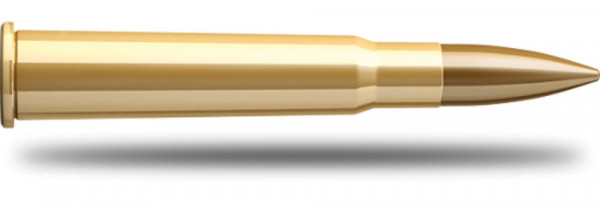Sellier-Bellot-303-British-11.66g-180grs-FMJ_0.jpg