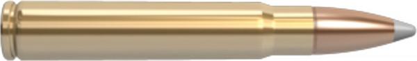 Nosler-9.3-x-62-16.20g-250grs-Trophy-Grade-Hunting_0.jpg