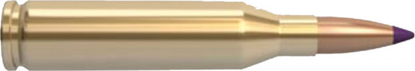 Nosler-243-Win-5.83g-90grs-Ballistic-Tip-Hunting_0.jpg